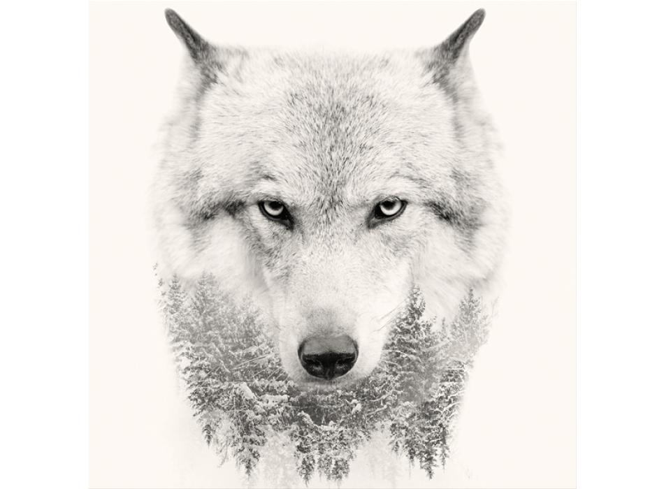 Framework WHITE WOLF G3322 PINTDECOR